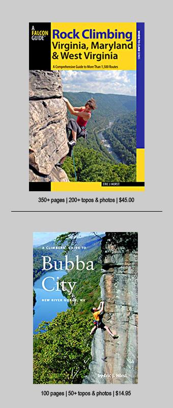 Books-sidebar-RCguides