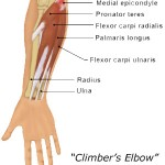 climbers-elbow copy