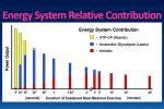 Energy System Training