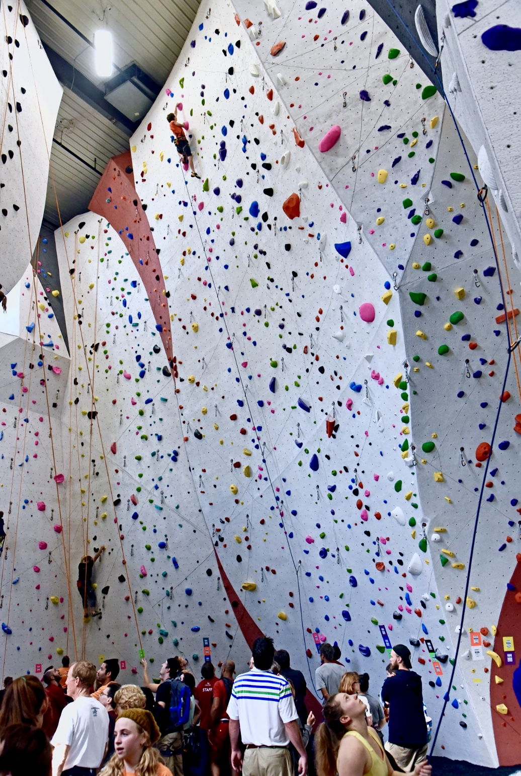 Climbing 101 Learning To Climb Indoors Welcome To The Vertical Extreme