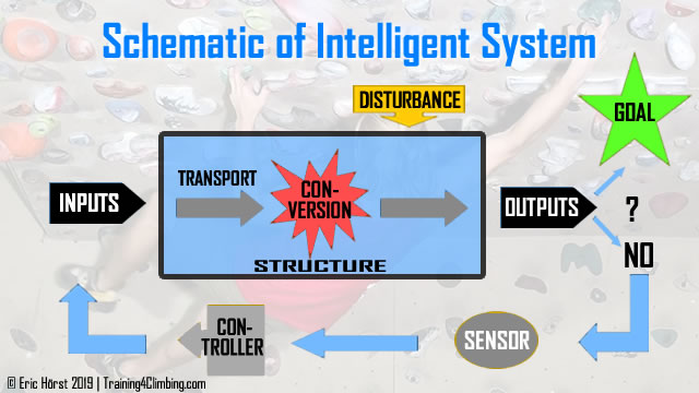 schematic of intelligent system -- by Eic Horst -- training for climbing